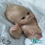 AW380002 - Dollkit 19 - Harry